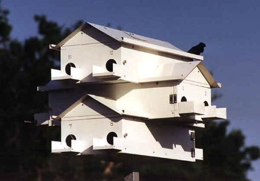 Lonestar Goliad Purple Martin House